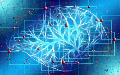 I Jornada Gido sobre Metástasis Cerebrales
