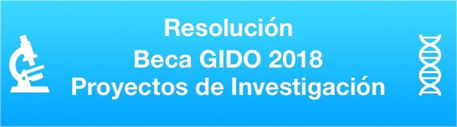 Resolución Beca GIDO Proyecto de Investigación 2018
