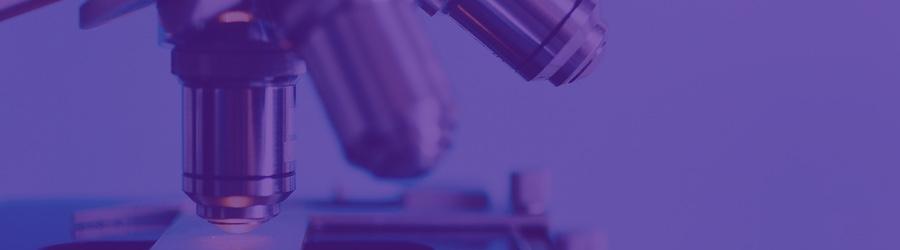Convocatoria Beca GIDO Proyecto de Investigación 2019